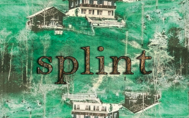 Splint-by-Diego-Valenzuela-Cover